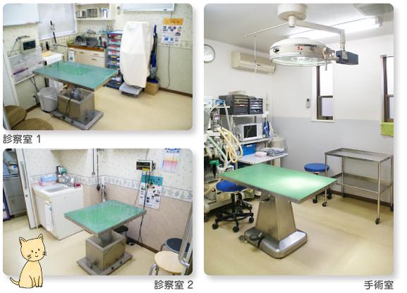 神戸エルザ動物病院photo